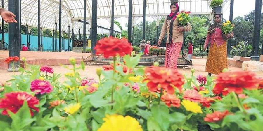 Lalbagh brightens up for flower show, royal theme to pay tribute to former Mysore ruler