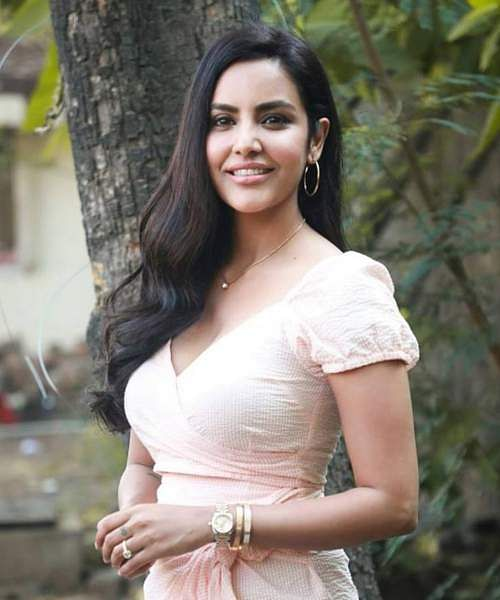 Priya Anand made her film debut with 2009 Tamil thriller 'Vaamanan'.