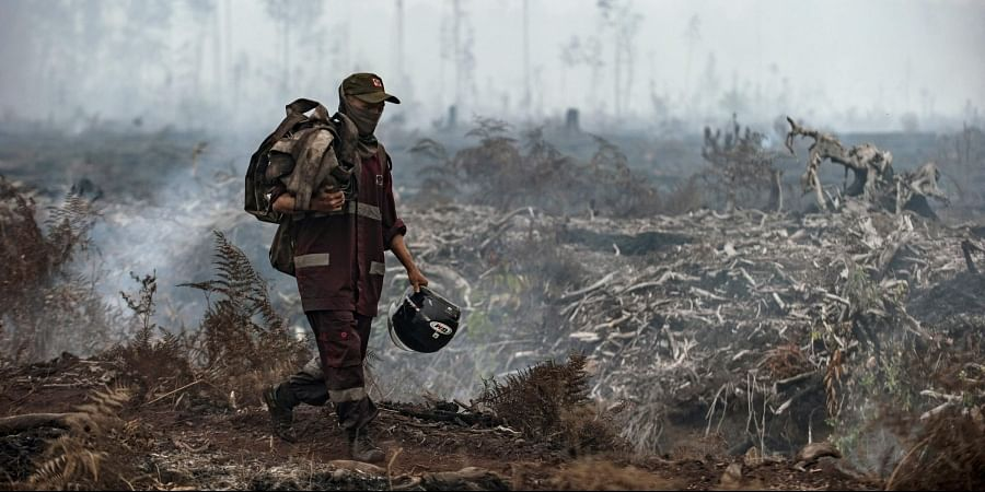 Indonesian police arrest hundreds linked to forest fires:The Asahi Shimbun