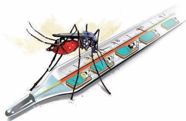 Lucknow reports 125 dengue cases in two months