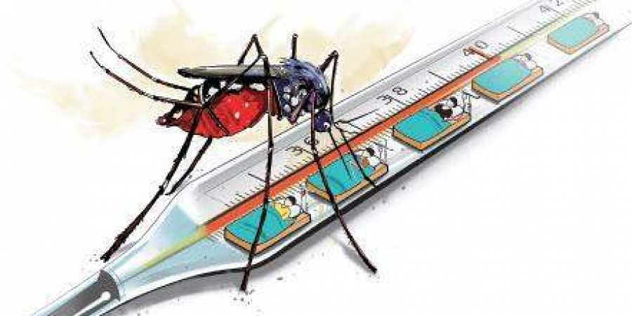 Number of Dengue cases in Lucknow are on a rise.