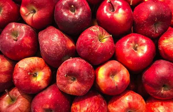 Jammu and Kashmir government procures 1.34 lakh apple boxes from fruit growers in south Kashmir
