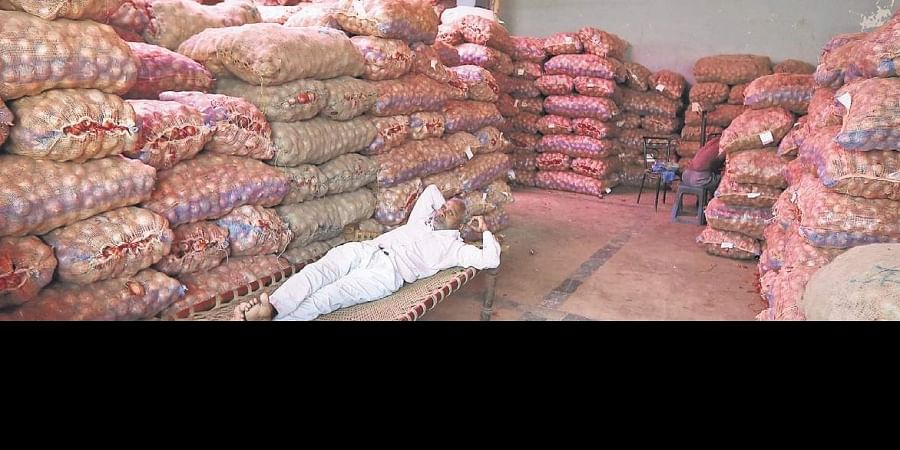 A labourer rests near sacks of onion at the Azadpur Mandi, a major market of the Agriculture Produce Marketing Committee, in New Delhi on Sunday. | (Arun Kumar | EPS)
