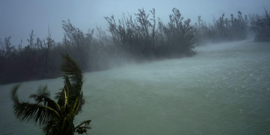 Strong winds from Hurricane Dorian blow the tops of trees and brush while whisking up water from the surface of a canal that leads to the sea, located behind the brush at top, seen from the balcony of a hotel in Freeport, Grand Bahama, Bahamas. (Photo   AP)
