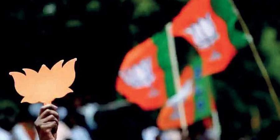 BJP flags, BJP logo