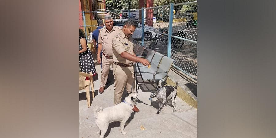 The South Division has 17 police stations, and Rohini has asked all the police officials to start taking care of the stray dogs and train them.