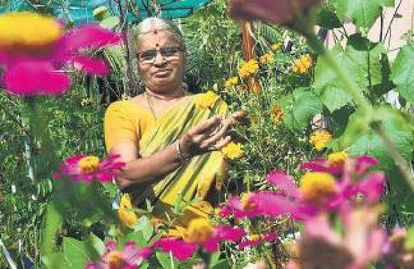A terrace garden forhealth and wellness