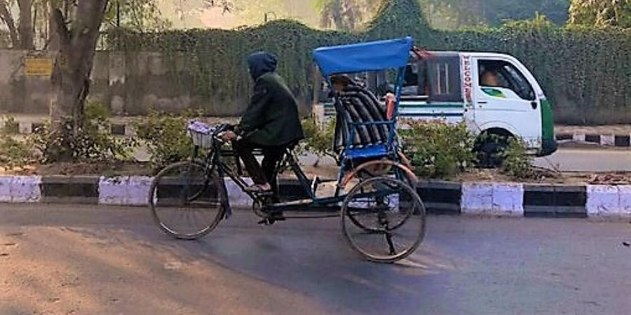 A dog wrapped in a blanket and enjoying a rickshaw ride.