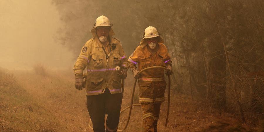 Forest fire, Bush fire, fire