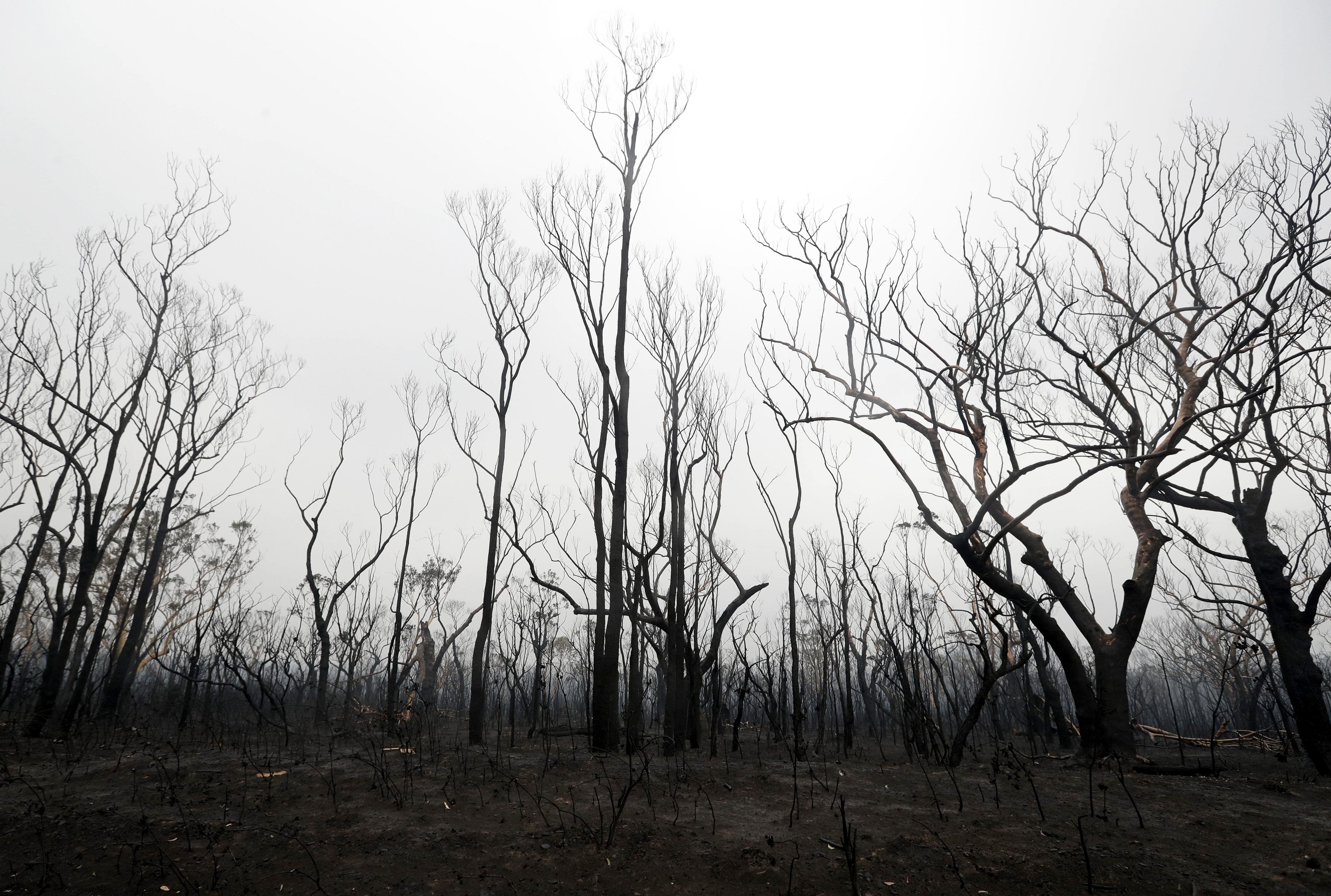 Australia bush fire Australia wildfire