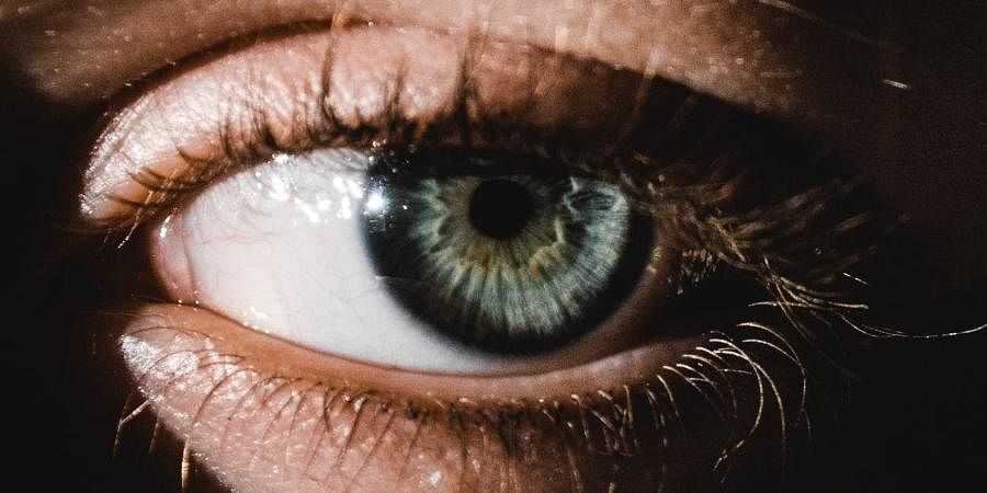 eye care eye eyes