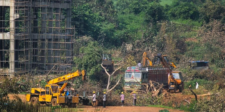 A crane lifts the the fallen trees to be carried away for building a construction site of metro car parking shed at Aarey Colony Mumbai Monday Oct. 7 2019. | (Photo | PTI)
