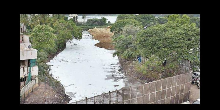 A file picture of a frothy Bellandur Lake