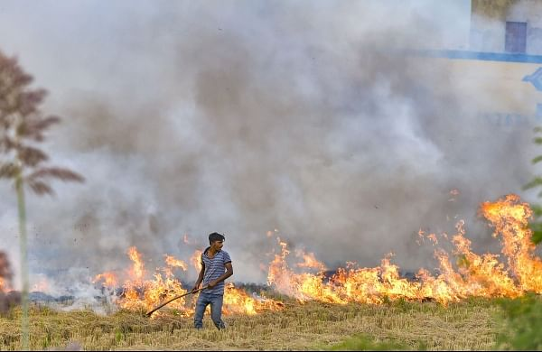 SC doing its part to deal with stubble burning, Centre & states have to do theirs: Delhi High Court