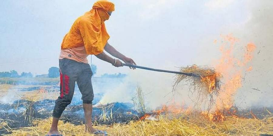 Stubble burning; farm fires