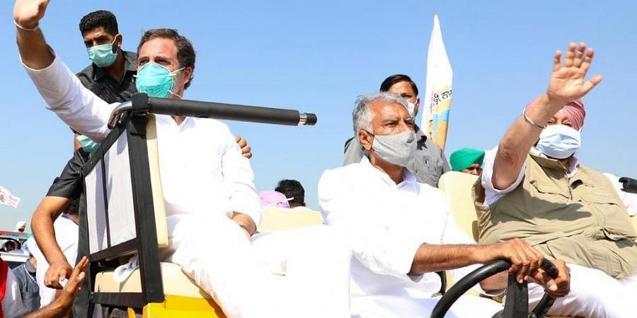 Rahul Gandhi at a tractor rally held in protest against the farm laws . (Photo  EPS)