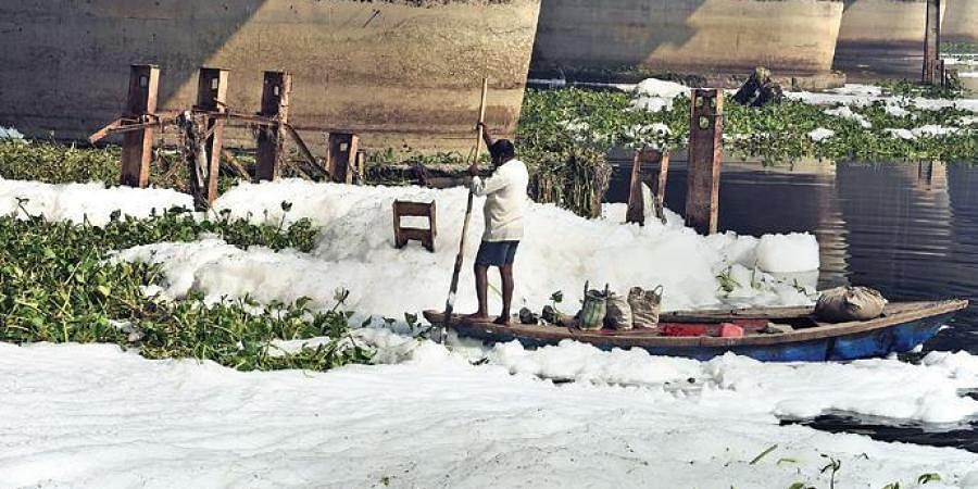 Frothing in river Yamuna