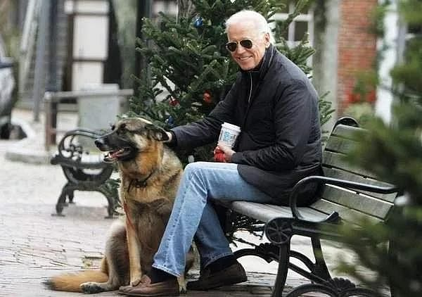 Major and Champ would have certainly helped Joe Biden in attracting the votes of many dog lovers in the US.