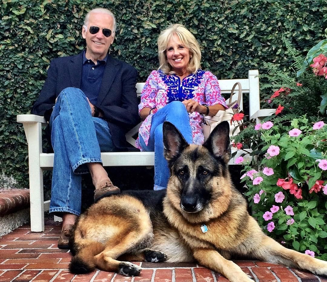 The tweet put up by Twitter account Champ & Major Biden reads, 'We're so proud of our dad @JoeBiden, the first-ever presidential candidate to receive 75 million votes. But Major will be setting a record of his own as he's the first-ever rescue pupper to live in the WH. We're gonna play all day & receive countless treats!'