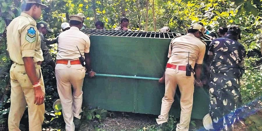 Forest officials set up trap in Kondapalli village in Penchakalpet forest area in Kumrambheem Asifabad district