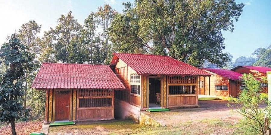 Of the 30 camps, boating facility is available in 20. In Similipal, an added attraction is jungle safari under which two safari vehicles are engaged for visit to waterfalls
