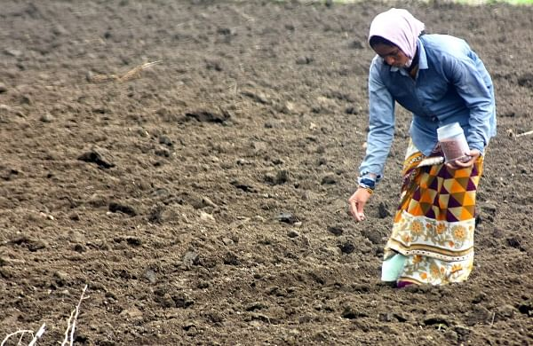 Women farmers to be adversely affected if new farm laws not repealed, believe experts