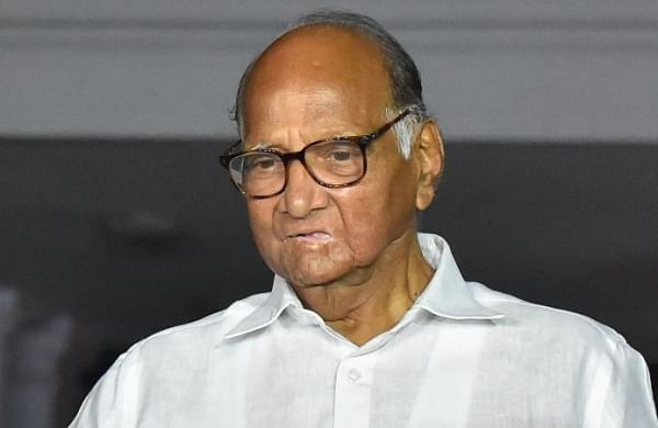 Rahul Gandhi's consistency is issue:Sharad Pawar disses Congress MP