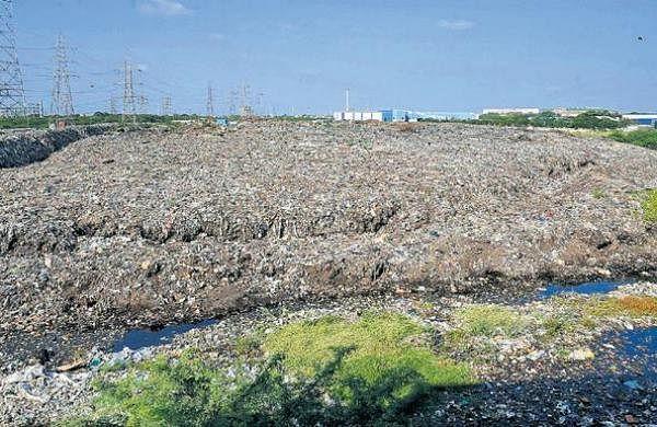 Biomining of 10-feet deep landfill hints at presence of waterbody