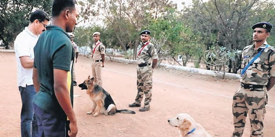 Sniffer dogs ready for the passing out parade to be held at Integrated Intelligence Training Academy at Moinabad on Friday