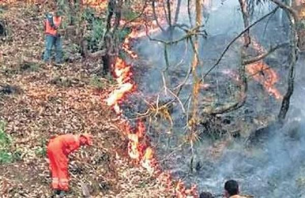 Uttarakhand gears up with fund, force to check forest fires