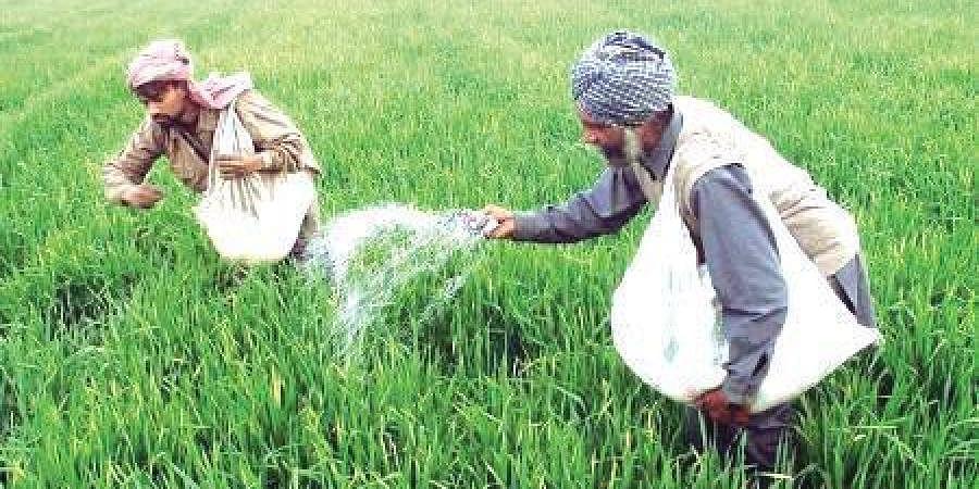 Farmers, Agriculture, Pesticide