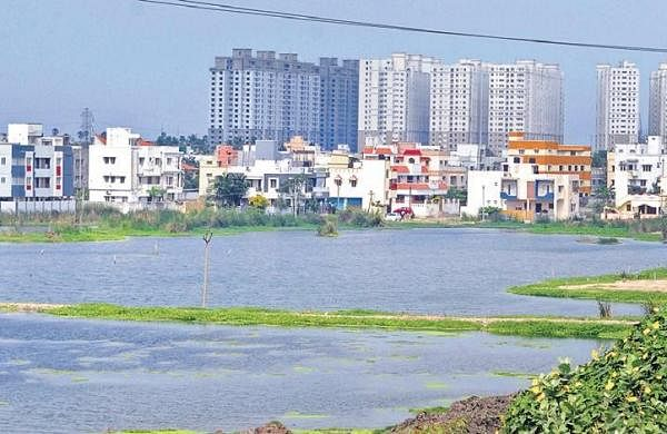 NGT's nudge to bring an action plan to clean lake