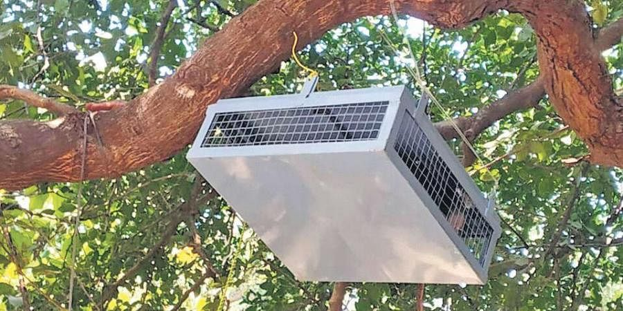 An ultrasonic sound repeller installed on a tree in Deogarh town