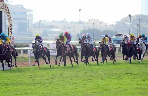 Saudi Arabia to host world's richest horse race