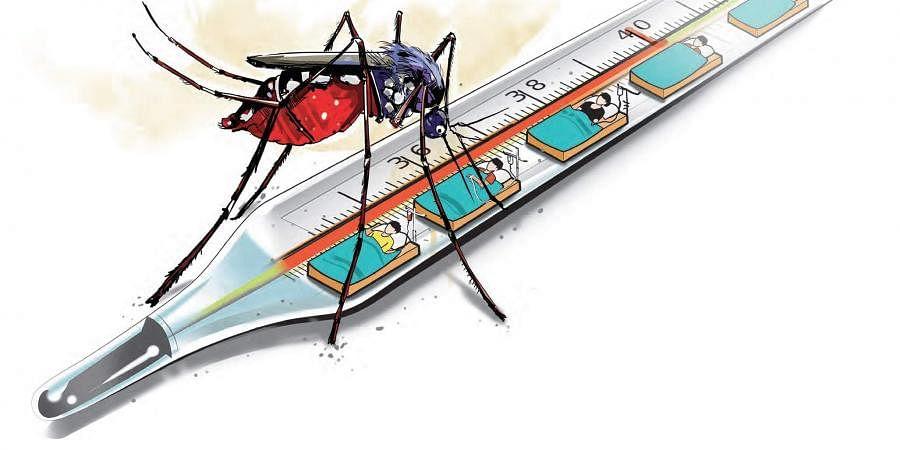 dengue, malaria, mosquito