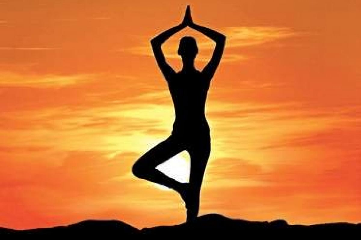 Virtual Yoga Assistance May Help You Be Fit During Home Quarantine Say Experts The New Indian Express