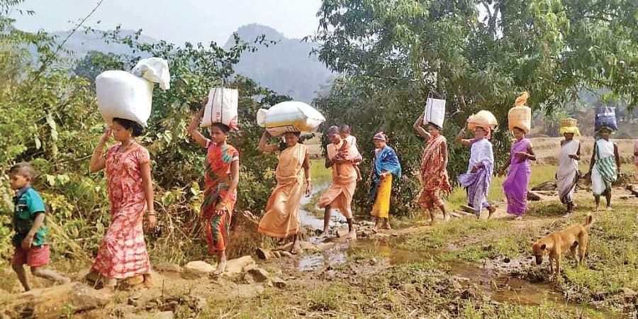People of Chepulpada trek for 10 km through hilly terrain to reach Kadamguda panchayat office for collecting rice and other items under Public Distribution System