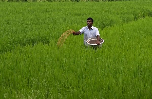 Centre makes crop insurance scheme voluntary for farmers