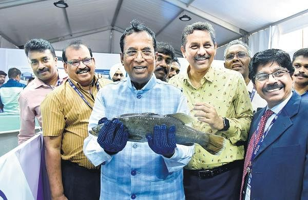 Centre will help seafood sector make country top exporter, says Union Minister