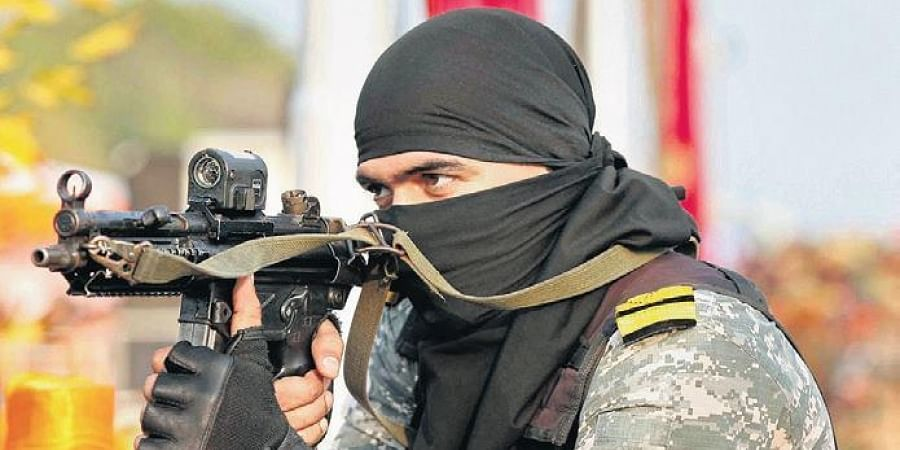 A commando performs a live demo during DefExpo-2020 in Lucknow.