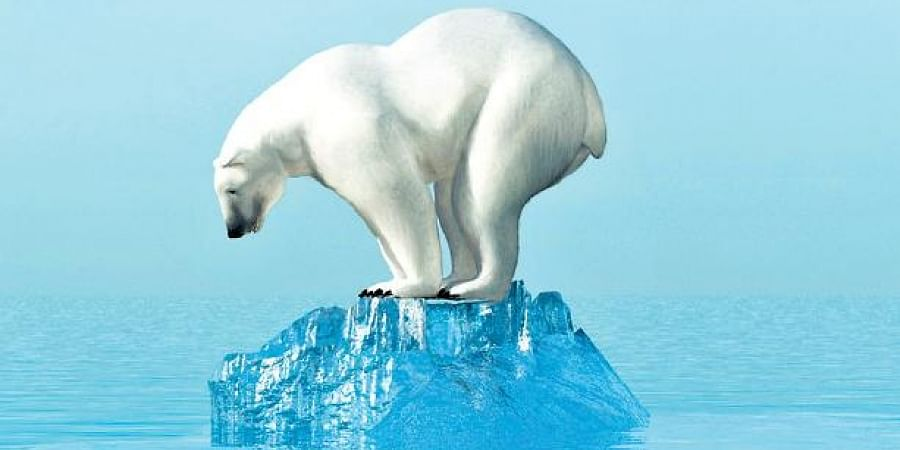 Apocalypse now: The Earth has only ten years to reverse climate change blowback