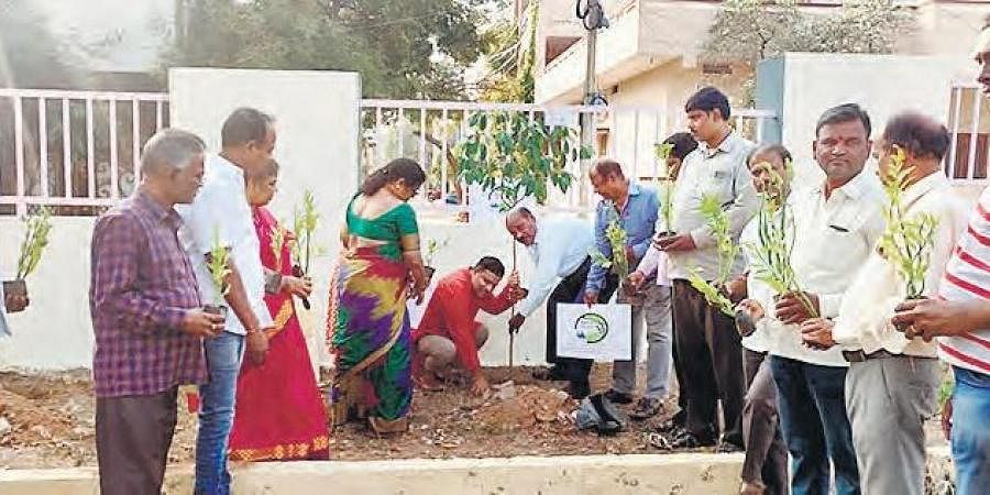 Association members under the banner Federation of New Bolarum Colonies Welfare Association (FNBCWA) plant saplings under 'Green challenge drive' on Tuesday