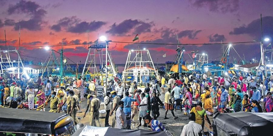 Despite low prices, few customers are visiting Kasimedu, the biggest fishmarket in Chennai. Most of the people seen in this picture are fishermen and sellers