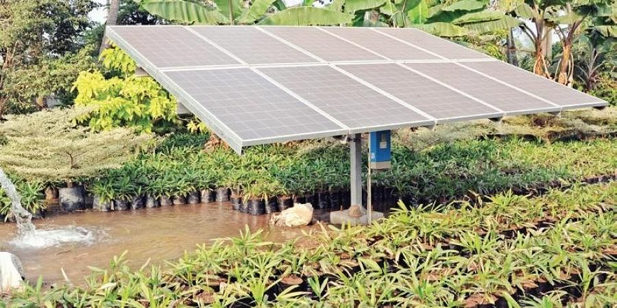 Efforts To Set Up 10 000 Mw Solar Power Plants In Andhra Pradesh Intensified The New Indian Express