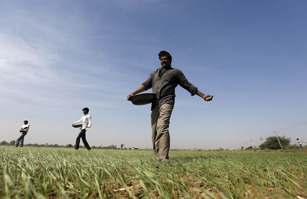 Rising prices of fertilisers worry farmers in Maharashtra
