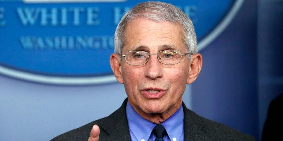 National Institute of Allergy and Infectious Diseases director Dr Anthony Fauci