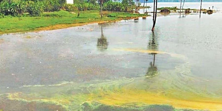 Meghadri Gedda reservoir in Visakhapatnam (Photo | G Satyanarayana, EPS)