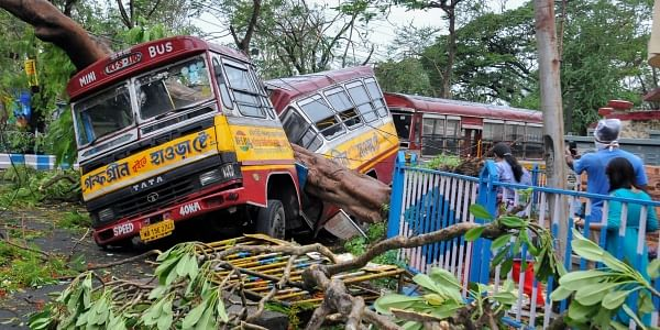 Mangled remains of a bus after a tree fell on it during Cyclone Amphan in Kolkata Thursday May 21 2020. (Photo | PTI)