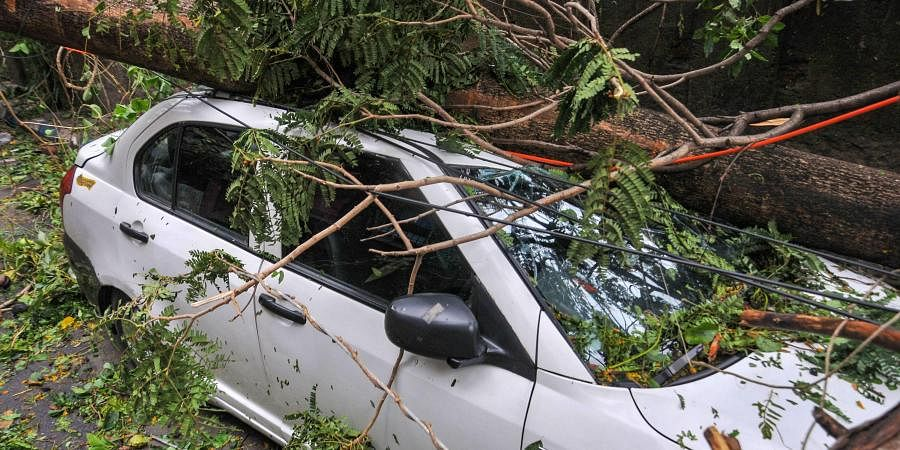 Mangled remains of a car after a tree fell on it during Cyclone Amphan in Kolkata Thursday May 21 2020.