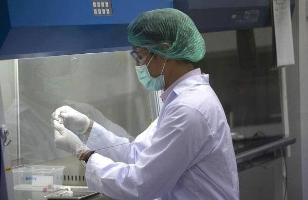 US company Novavaxstarts coronavirus vaccine human trial among 131 volunteers in Australia